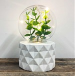Set of 4 Mixed Plant Lamps (click to enlarge)